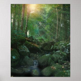 Mossy Woodland Stream Poster