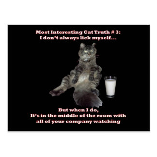 Most Interesting Cat #3.jpg Postcard