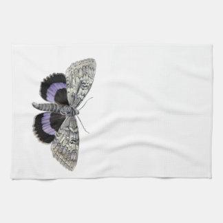Moth Kitchen Towel