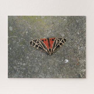 Moth, Photo Puzzle. Jigsaw Puzzle