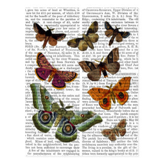 Moth Plate 3 Postcard