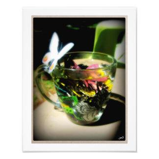 Moth Wing Tea Photograph