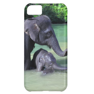 Mother and baby elephant in river iPhone 5C cover