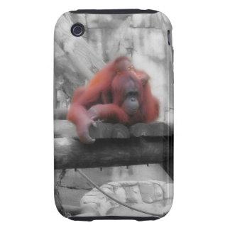 Mother and Baby Orangutan Tough iPhone 3 Cases