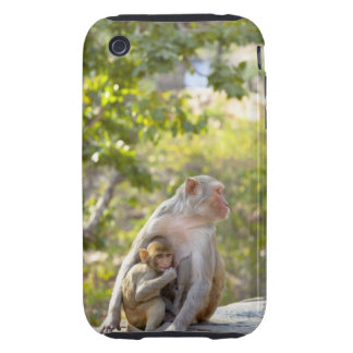 Mother and baby Rhesus Macaque monkeys on wall iPhone 3 Tough Case