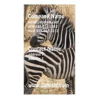Mother and Baby Zebra Business Cards