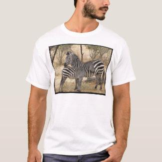 Mother and Baby Zebra  Men's T-Shirt