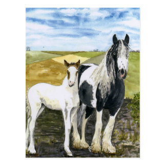 Mother and Foal Postcard