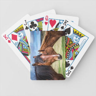 Mother and son bicycle playing cards