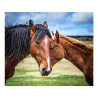 Mother and Son Photo Print