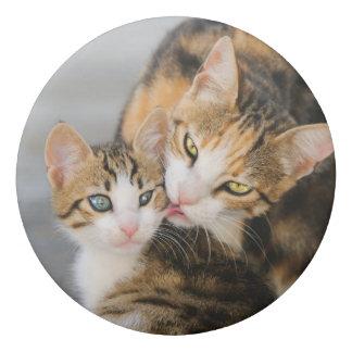 Mother Cat Loves Cute Baby Kitten Animal Pet Photo Eraser