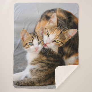 Mother Cat Loves Cute Baby Kitten Animal Pet Photo Sherpa Blanket