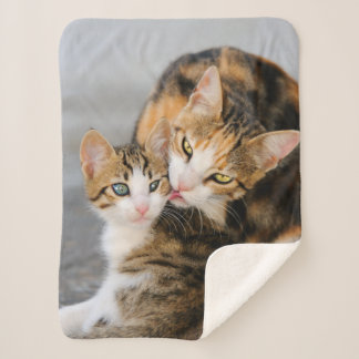 Mother Cat Loves Cute Baby Kitten Animal Photo on Sherpa Blanket