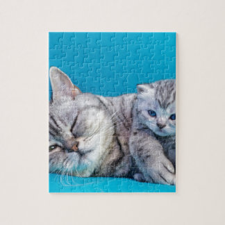 Mother cat lying with kitten on blue garments jigsaw puzzle