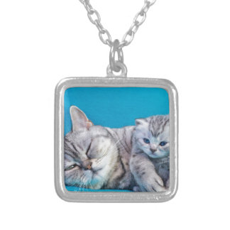 Mother cat lying with kitten on blue garments silver plated necklace