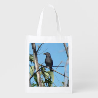 Mother Catbird Gathers Berries to her Feed Babies Grocery Bags