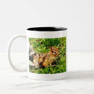 mother chipmunk and babies Two-Tone coffee mug