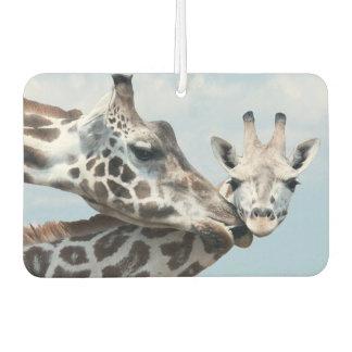Mother giraffe kisses her calf air freshener