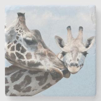 Mother giraffe kisses her calf stone coaster