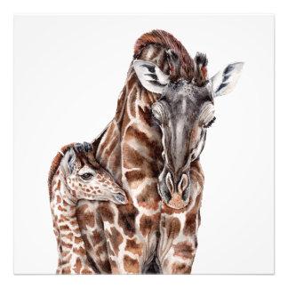 Mother Giraffe with Baby Giraffe Art Print
