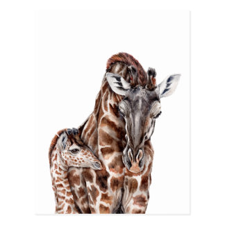 Mother Giraffe with Baby Giraffe Postcard
