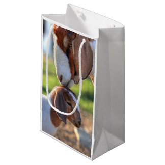 Mother goat kissing her baby on head. small gift bag