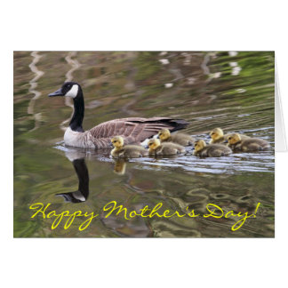Mother Goose and Baby Geese Photo Card