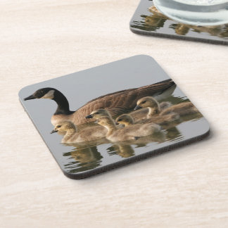 Mother Goose and Her Goslings Coaster