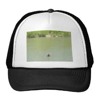 Mother Goose and her Trucker Hat