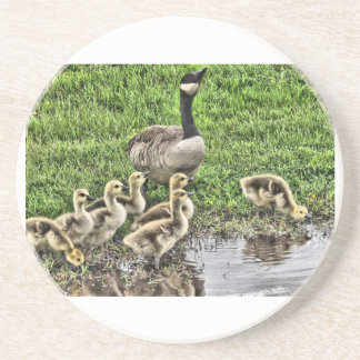 Mother Goose Drink Coasters