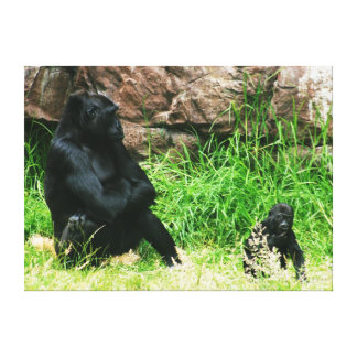 Mother Gorilla Watching Her 8 Month Old Baby Boy Canvas Prints