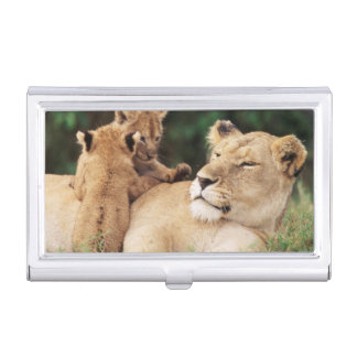 Mother lion with cubs business card holder