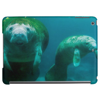 Mother manatee with her calf in Crystal River iPad Air Cover