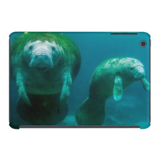 Mother manatee with her calf in Crystal River iPad Mini Cover