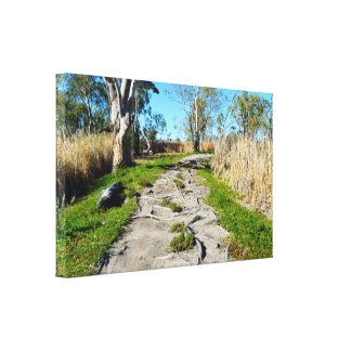 Mother Natures Footpath, Canvas Print
