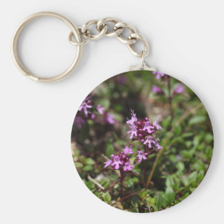 Mother of thyme flowers (Thymus praecox) Basic Round Button Keychain