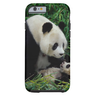 Mother panda and baby in the bamboo bush, Wolong Tough iPhone 6 Case