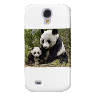 Mother Panda With Her Cub