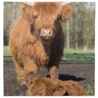 Mother scottish highlander cow near newborn calf printed napkins