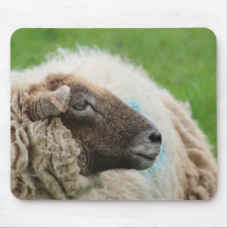 Mother Sheep Mouse Pad