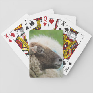 Mother Sheep Playing Cards