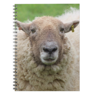 Mother Sheep Spiral Notebook