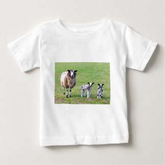 Mother sheep with two newborn lambs in spring baby T-Shirt