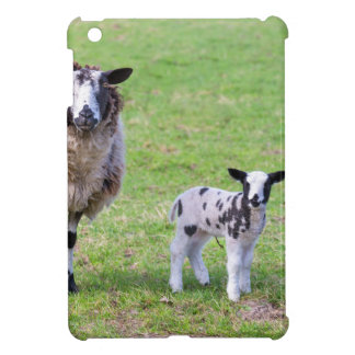 Mother sheep with two newborn lambs in spring iPad mini cover