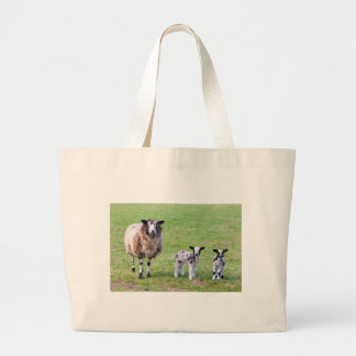 Mother sheep with two newborn lambs in spring large tote bag