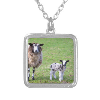 Mother sheep with two newborn lambs in spring silver plated necklace