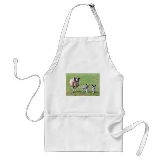 Mother sheep with two newborn lambs in spring standard apron