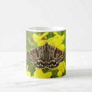 Mother Shipton Moth Bug Mug