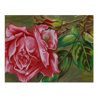 Mother's Dar Rose Flower Postcard