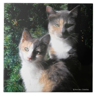 """""""Mothers & Daughters"""" Tile"""